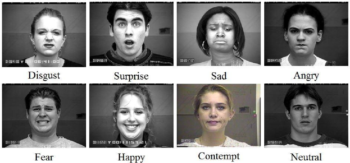 EmoPy – a machine learning toolkit for emotional expression